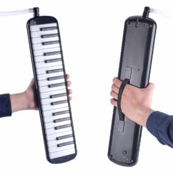 Swan 37 Key Piano Style Melodica Review